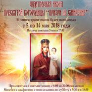 Принесение чудотворной иконы в храм сщмч. Гермогена Московского в Гольянове